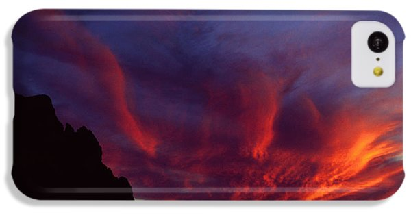 Phoenix Risen IPhone 5c Case by Randy Oberg