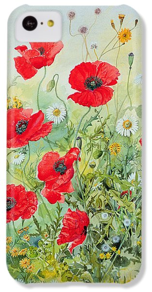 Poppies And Mayweed IPhone 5c Case by John Gubbins