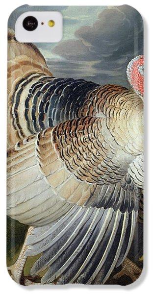 Portrait Of A Turkey  IPhone 5c Case by Johann Wenceslaus Peter Wenzal