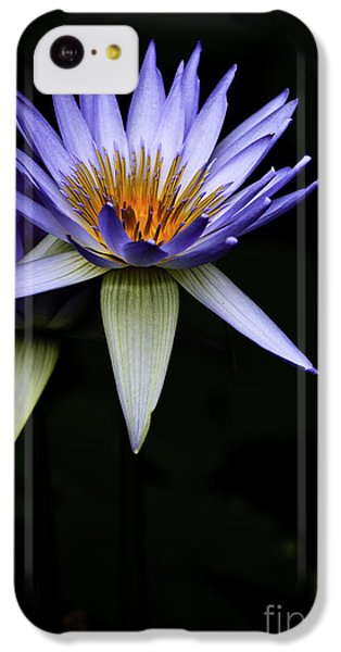 Purple Waterlily IPhone 5c Case by Avalon Fine Art Photography