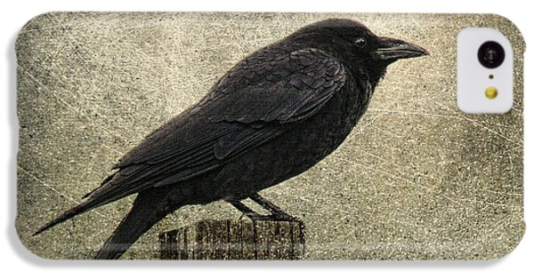 Raven IPhone 5c Case by Elena Nosyreva