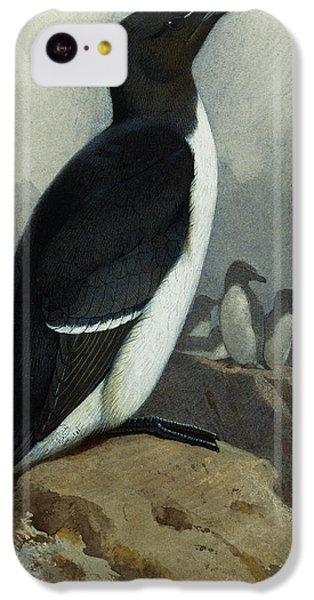 Razorbill IPhone 5c Case by Archibald Thorburn