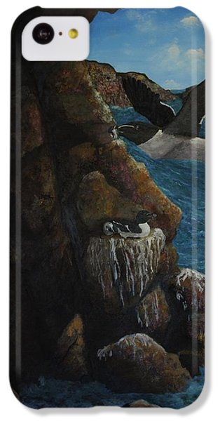 Razorbills IPhone 5c Case by Eric Petrie