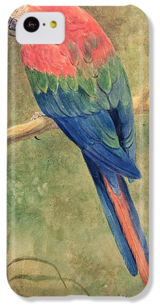 Red And Blue Macaw IPhone 5c Case by Henry Stacey Marks