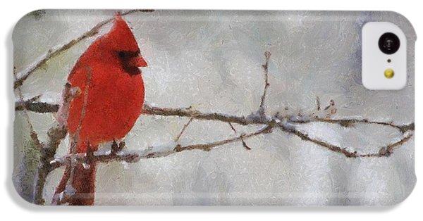 Red Bird Of Winter IPhone 5c Case by Jeff Kolker