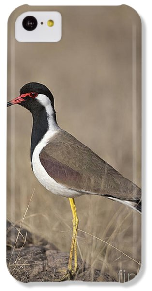 Red-wattled Lapwing IPhone 5c Case by Bernd Rohrschneider/FLPA