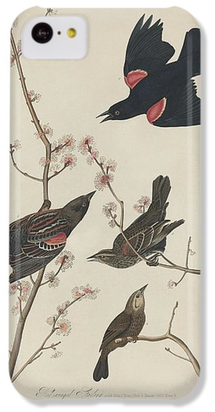 Red-winged Starling IPhone 5c Case by John James Audubon