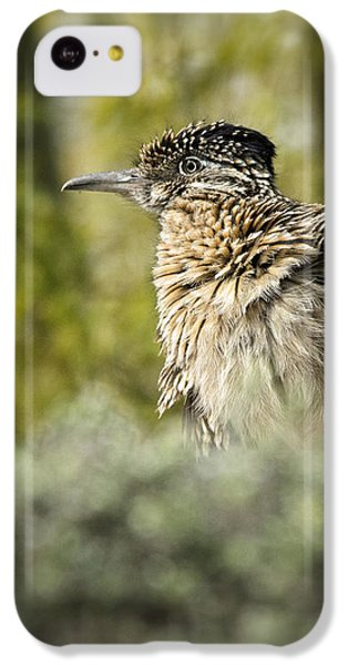 Roadrunner On Guard  IPhone 5c Case by Saija  Lehtonen