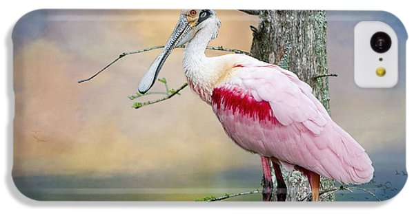 Roseate Spoonbill In Treetop IPhone 5c Case by Bonnie Barry