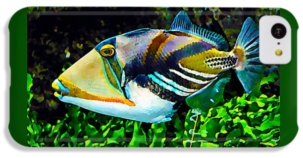 Saltwater Triggerfish IPhone 5c Case by Marvin Blaine