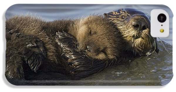 Sea Otter Mother With Pup Monterey Bay IPhone 5c Case by Suzi Eszterhas