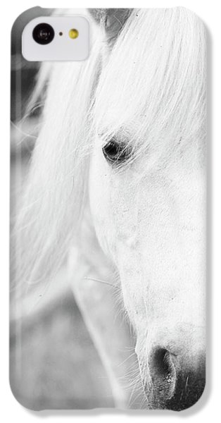 Shetland Pony IPhone 5c Case by Tina Lee