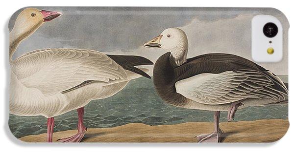 Snow Goose IPhone 5c Case by John James Audubon