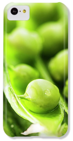 Snow Peas Or Green Peas Seeds IPhone 5c Case by Vishwanath Bhat