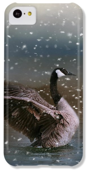 Snowy Swim IPhone 5c Case by Jai Johnson