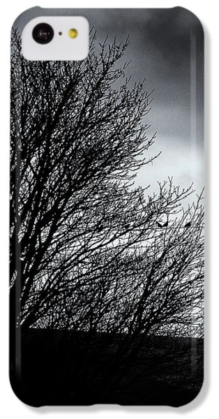 Starlings Roost IPhone 5c Case by Philip Openshaw