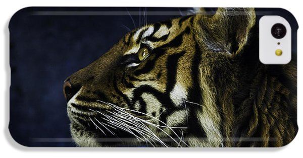 Sumatran Tiger Profile IPhone 5c Case by Avalon Fine Art Photography