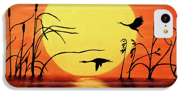 Sunset Geese IPhone 5c Case by Teresa Wing