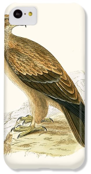 Tawny Eagle IPhone 5c Case by English School