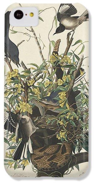 The Mockingbird IPhone 5c Case by John James Audubon