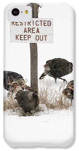 The Turkey Patrol IPhone 5c Case by Mike Dawson