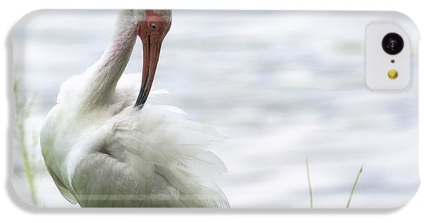 The White Ibis  IPhone 5c Case by Saija  Lehtonen