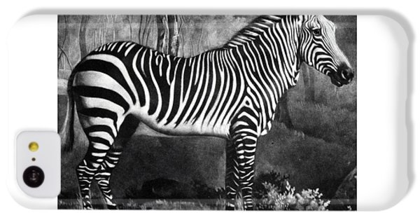 The Zebra IPhone 5c Case by George Stubbs