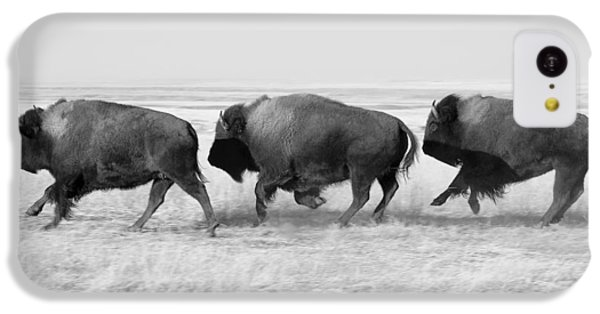 Three Buffalo In Black And White IPhone 5c Case by Todd Klassy