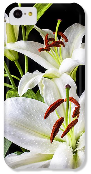 Three White Lilies IPhone 5c Case by Garry Gay