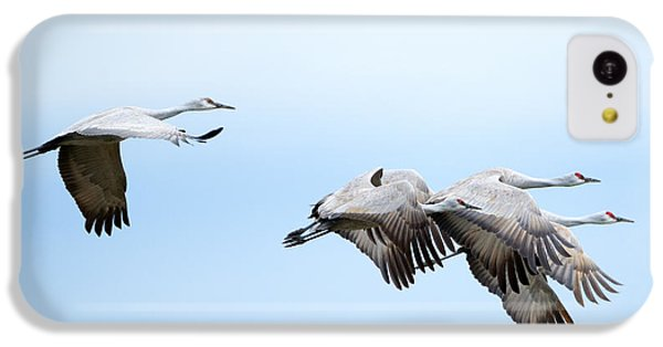 Tight Formation IPhone 5c Case by Mike Dawson