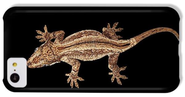 Top View Of Gargoyle Gecko, Rhacodactylus Auriculatus Staring Isolated On Black Background. Native T IPhone 5c Case by Sergey Taran