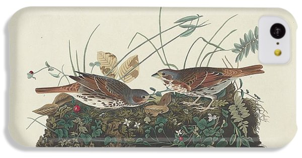 Two-colored Sparrow IPhone 5c Case by John James Audubon