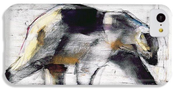 Ursus Maritimus IPhone 5c Case by Mark Adlington