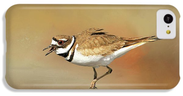 Wading Killdeer IPhone 5c Case by Donna Kennedy