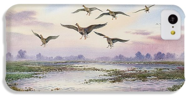 White-fronted Geese Alighting IPhone 5c Case by Carl Donner
