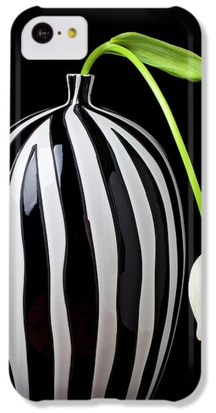 White Tulip In Striped Vase IPhone 5c Case by Garry Gay