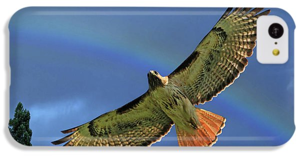 Wings 2 IPhone 5c Case by Donna Kennedy
