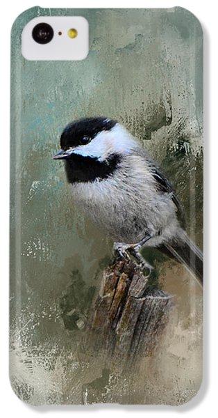 Winter Chickadee IPhone 5c Case by Jai Johnson