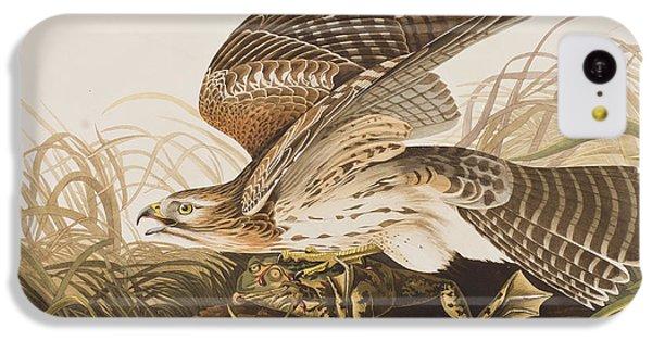 Winter Hawk IPhone 5c Case by John James Audubon
