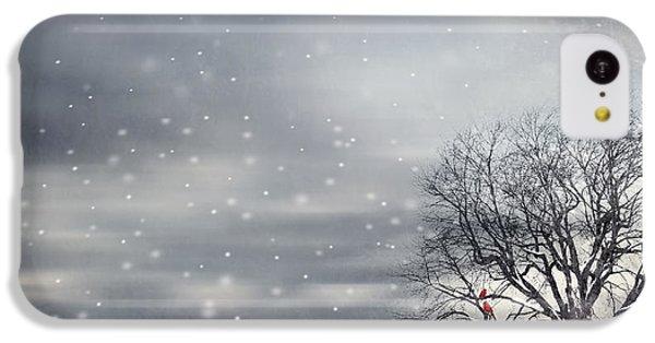 Winter IPhone 5c Case by Lourry Legarde