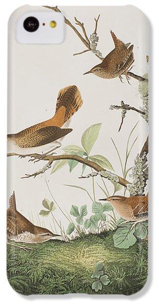 Winter Wren Or Rock Wren IPhone 5c Case by John James Audubon