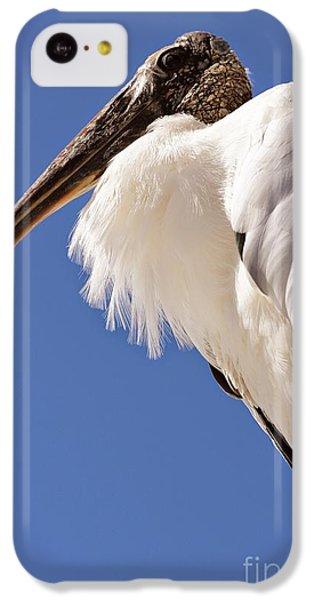 Wonderful Wood Stork IPhone 5c Case by Carol Groenen