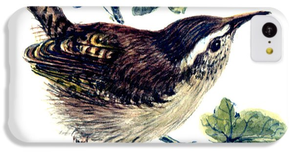 Wren In The Ivy IPhone 5c Case by Nell Hill