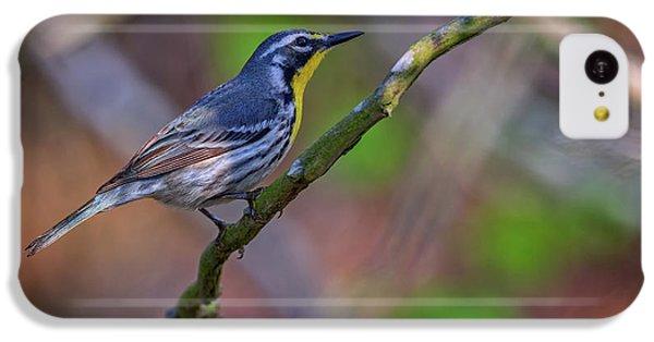 Yellow-throated Warbler IPhone 5c Case by Rick Berk