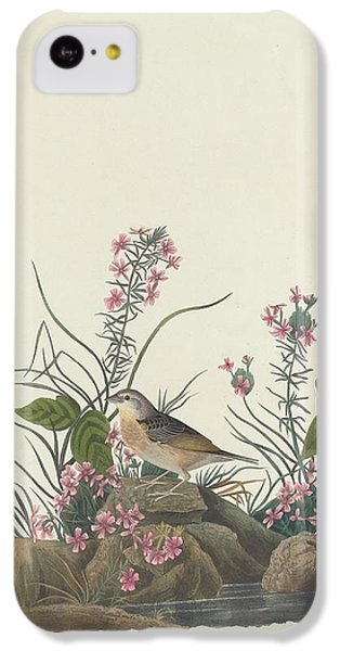 Yellow-winged Sparrow IPhone 5c Case by John James Audubon