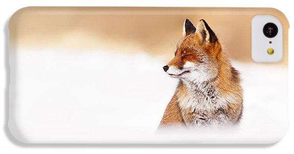 Zen Fox Series - Zen Fox In Winter Mood IPhone 5c Case by Roeselien Raimond