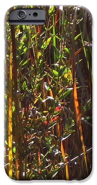 Electronic iPhone Cases -    Abstract  Sparkle  Bamboo grass and pretty flowers elegant digital decorative formation   iPhone Case by Navin Joshi