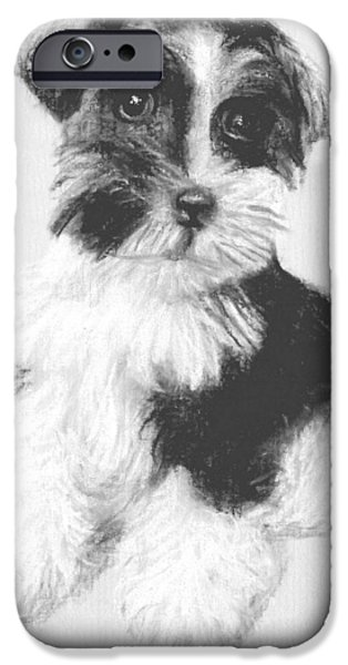 Scottish Terrier Puppy iPhone Cases - # 16 Welsh Terrier puppy iPhone Case by Alan Armstrong