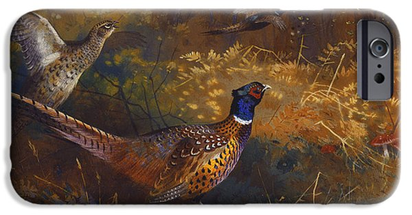 Gamebird iPhone Cases -  A Cock and Hen Pheasant at the Edge of a Wood iPhone Case by Archibald Thorburn