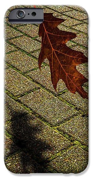 autumnal equinox iPhone Case by Bob Orsillo
